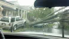 Day after Hurricane Isaac at Algiers Point
